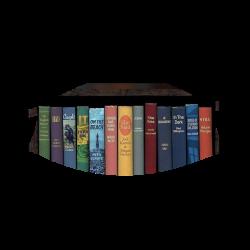 Quarantine Bookshelf Face Mask - quarantine-bookshelf-face-mask